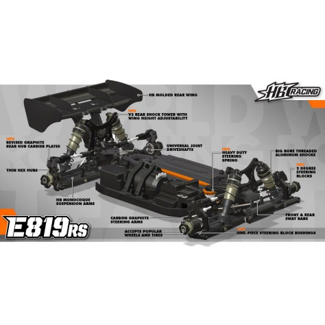 E819RS 1/8 Competition buggy